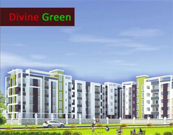 Divine-Green
